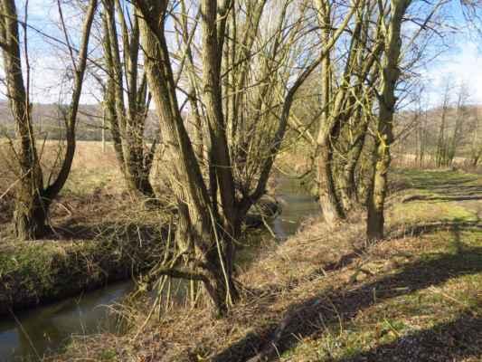 ...abychom si meandry řeky Bobravy užili