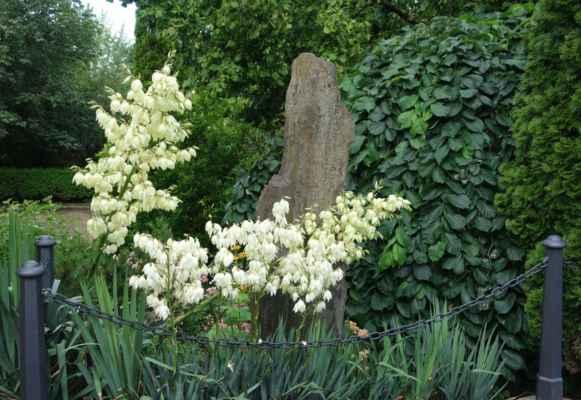 """""""Pamenhir"""" na okraji zahrady. Není to vidět, ale v květeně se skrývá ještě jeden menší menhirek."""