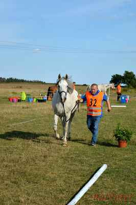 Vladimír Tůma + Hanibal 2 - vstupní veterina