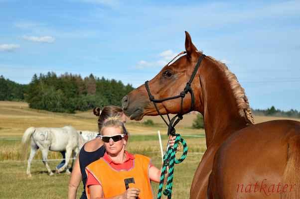 Zuzana Beranová + Abram - vstupní veterina