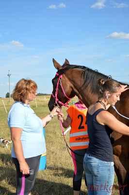 Adéla Juhászová + Lady Elisabeth 1 - vstupní veterina