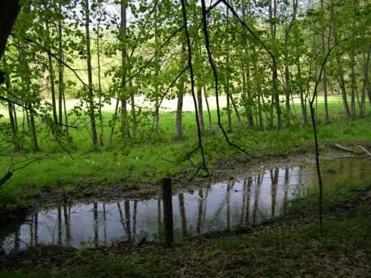 Weisshuhnův kanál 09 - louka a potok mezi kanálem a řekou Moravicí