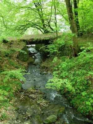Weisshuhnův kanál 26 - potok protékající pod akvaduktem do řeky Moravice