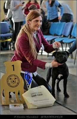 Keep Up With Domidar Dogs (Glimmer Man Domidar Dogs X Grinning Devils Domidar Dogs) - Psi - dorost - VN1