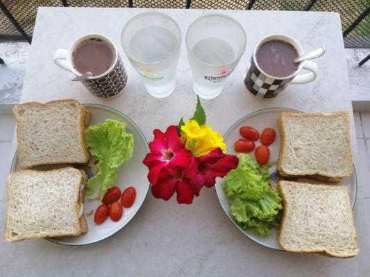 Zdravíme všechny příznivce rajčete. Nasnídáme se a jedeme na výlet. Tentokrát nás čeká několik atrakcí blízko Pattayi.