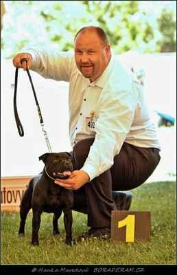 Iron Fist Domidar Dogs (Frisian Staff´s Final Countdown X Maya Stawka Wieksza Niz Zycie) - Feny - třída otevřená - V1, CAC
