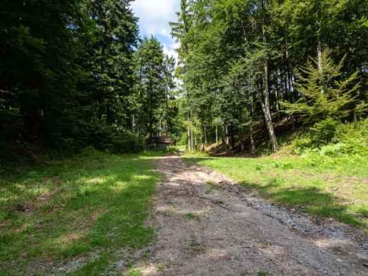 Ešte pred sedlom musíme odbočiť na lesnú cestu doprava, ktorá nás dovedie k senníku a odtiaľ pokračujeme vpravo do kopca