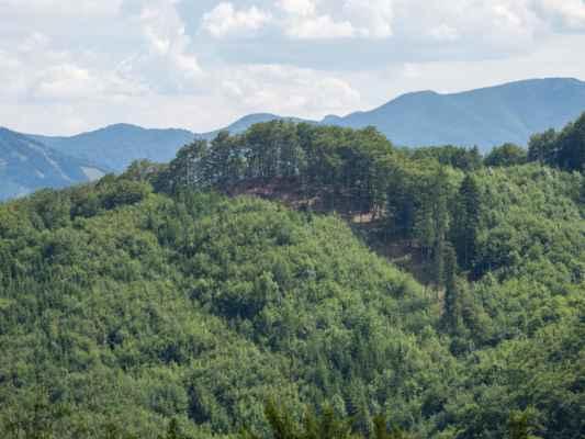 Za stromami na vrchole sa skrývajú Babice so Zbyňovskou skalnou ihlou