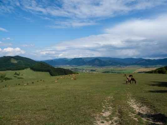 Opäť je krásne počasie s modrou oblohou. Ešte musíme prejsť cez elektrické ohradníky so stádom kráv a koní.