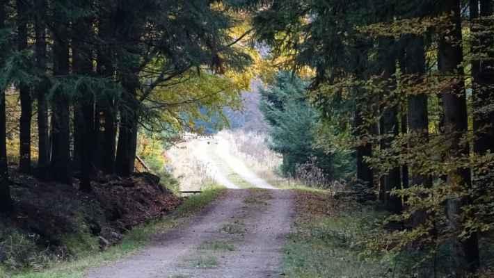 Pak už stoupám podzimní krajinou neznačených cest na Kristiánovskou cestu