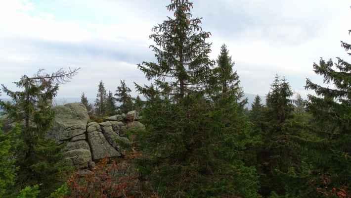 Vyhlídková plošina už má zorné pole zarostlé a tak jen upozorním na zakrytou Jizeru, druhou nejvyšší horu v české části, ukrytou zaprostředními stromy