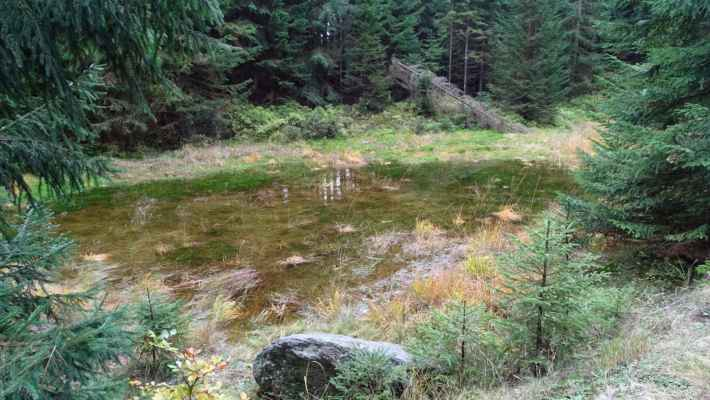 Malý rybníček u rozvodí u Hřebínku. Pramení zde Malý Štolpich (Bílý) a Blatný potok a odtékají každý na jinou stranu