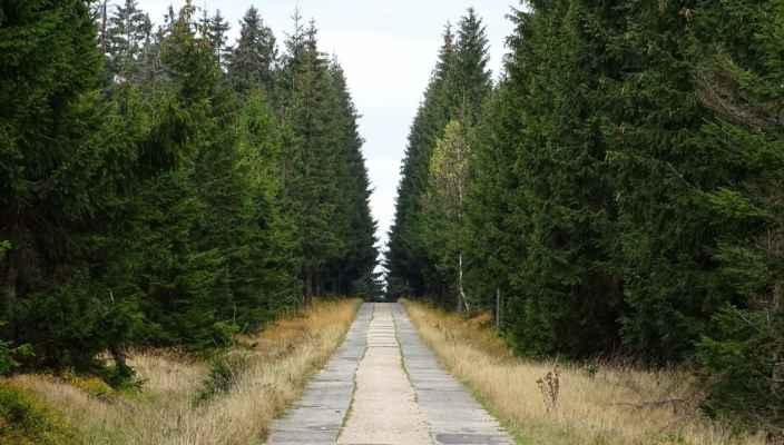 Tzv. Hejnická cesta vedoucí od Hřebínku k Nové Louce