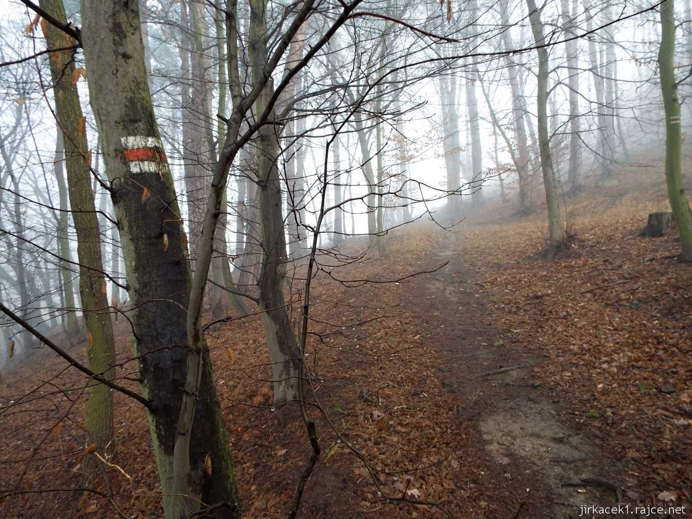 009 - Stezka u druhé keše - zde na nás pršelo ze stromů