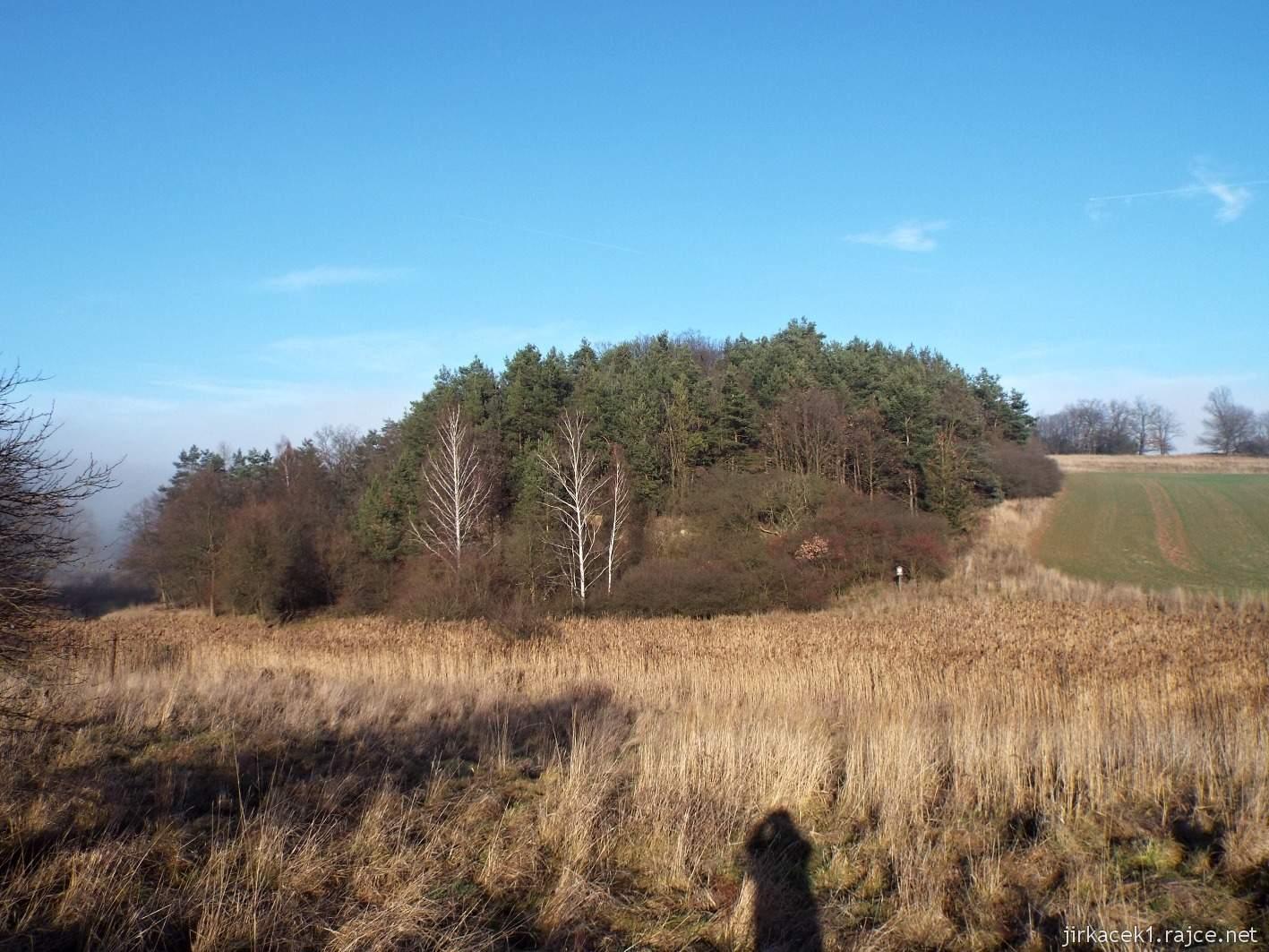 072 - přírodní park Kněží hora nedaleko sedmé keši