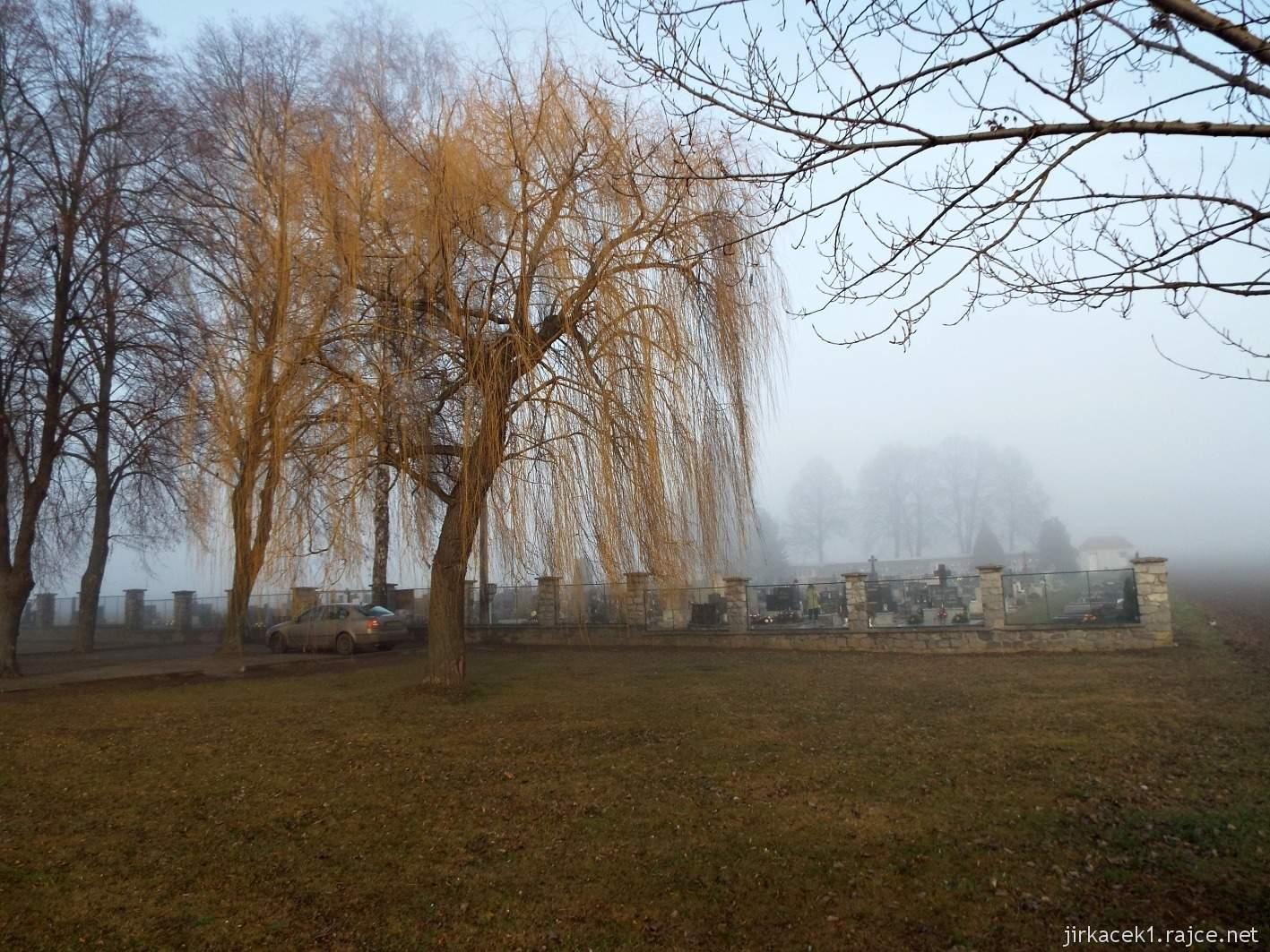 092 - vrba u hřbitova mez Krumsínem a Soběsuky